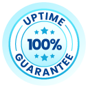 100% Uptime Guarantee SLA