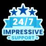24x7 Impressive Support